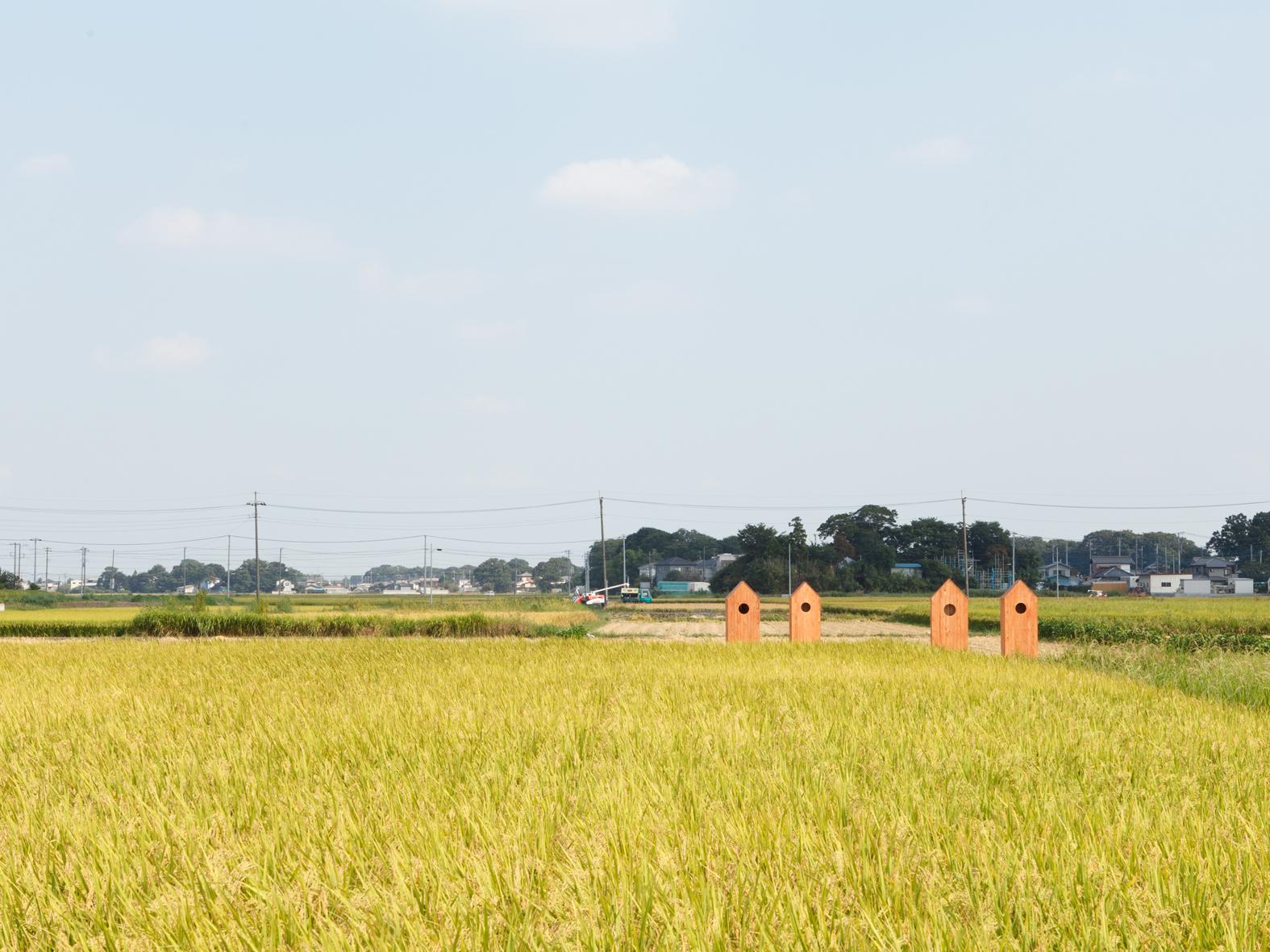 saitama_001